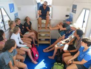 Jonian Dolphin Conservation 5